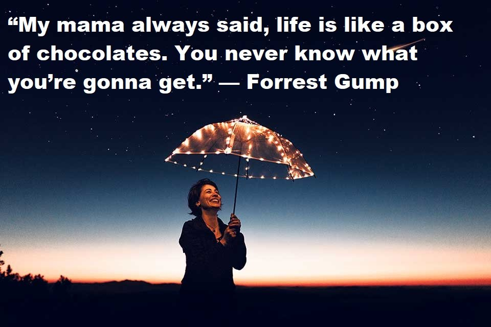 Quotes About Happy Life