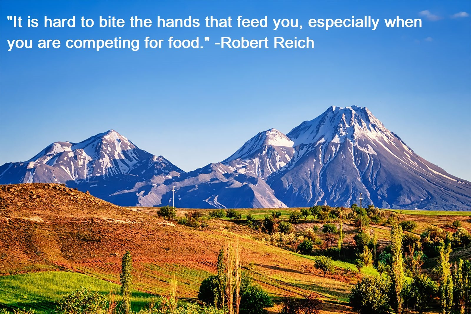 Don't Bite the Hand that Feeds You Quotes
