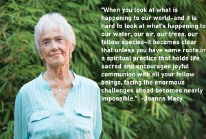 Joanna Macy Quotes