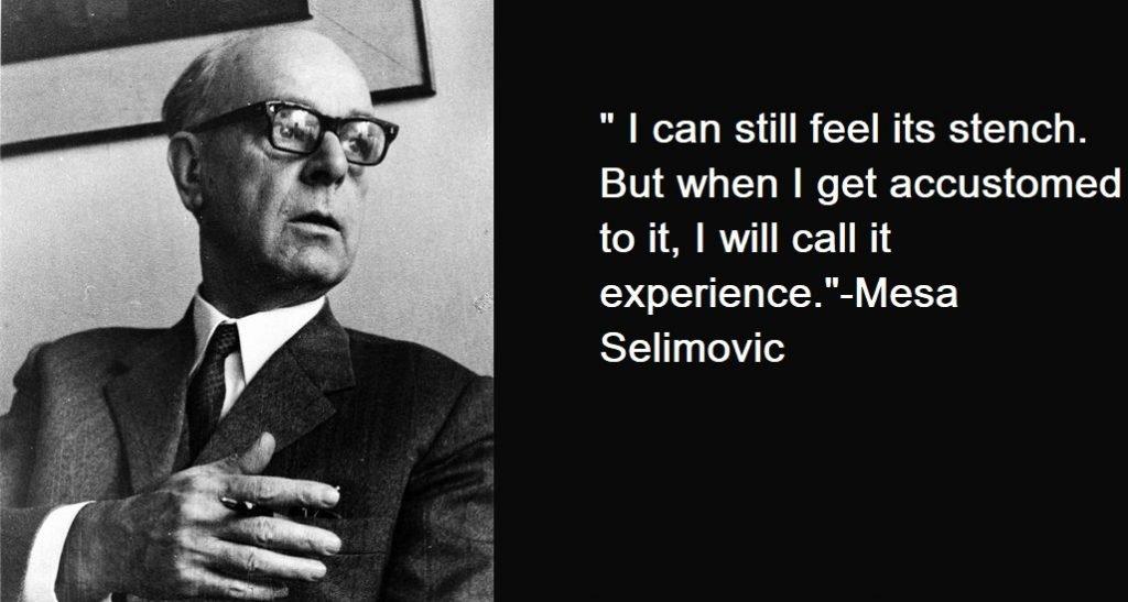 Mesa Selimovic Quotes