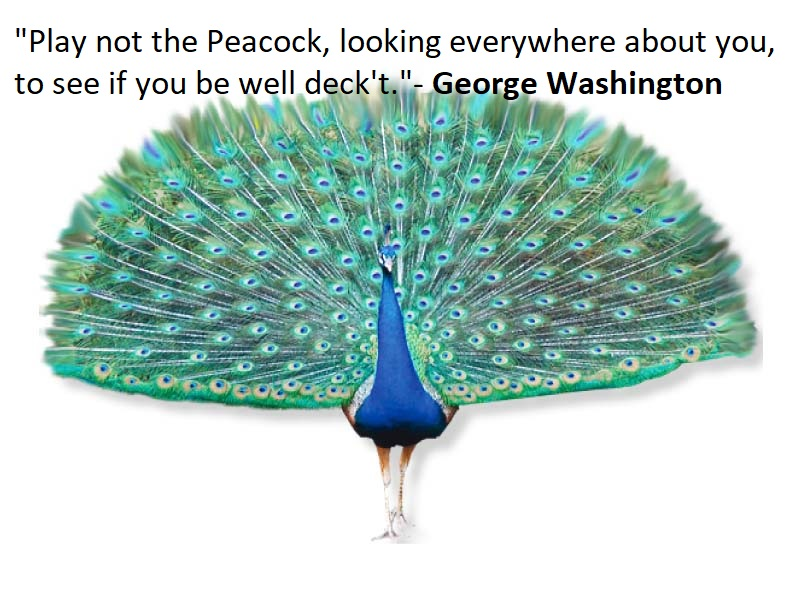 Peacock Quotes