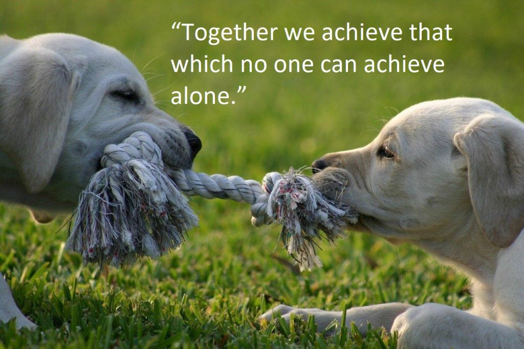 Tug Of War Quotes
